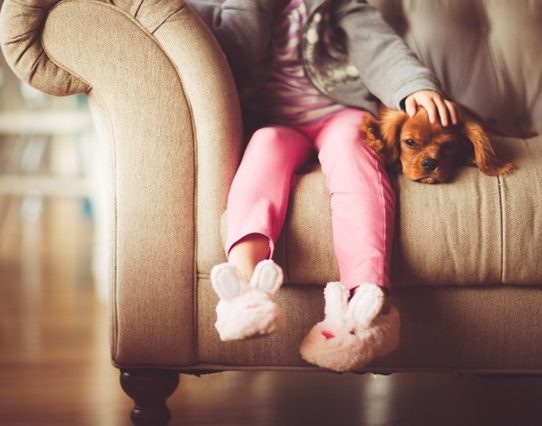 Chiens et enfants à la maison : quelles races privilégier ?