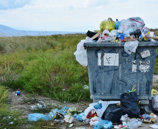 Le ménage écologique est-il moins cher?